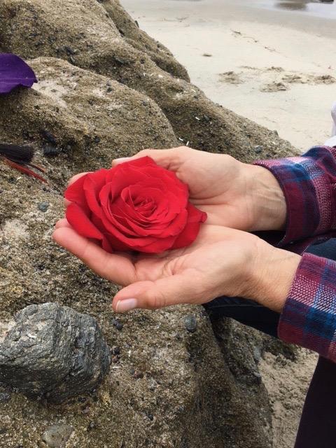 Ceremonial Rose