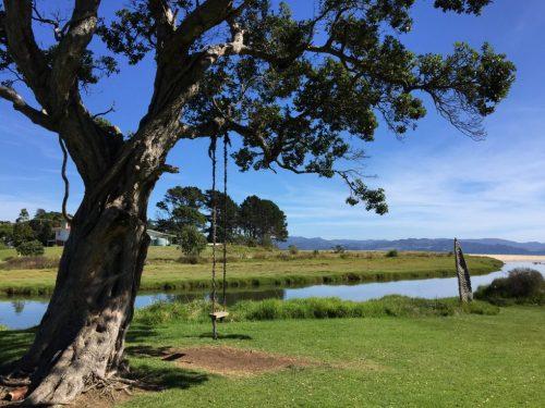 New Zealand Swing