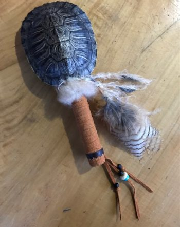 turtle owl rattle top