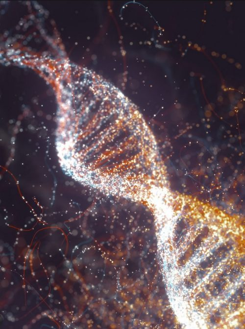 DNA mediumship medical intuition sessions